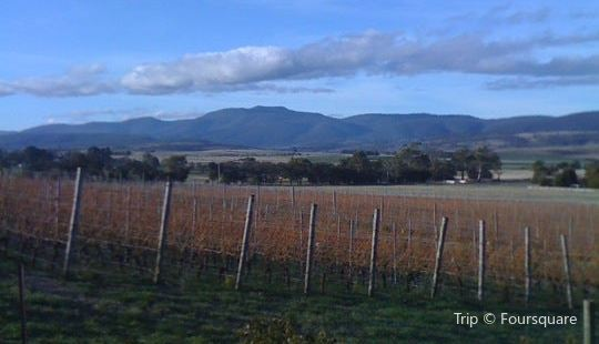 Domaine A Stoney Vineyard