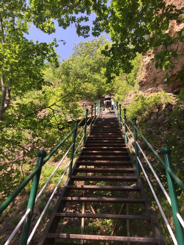 拉法山國家森林公園