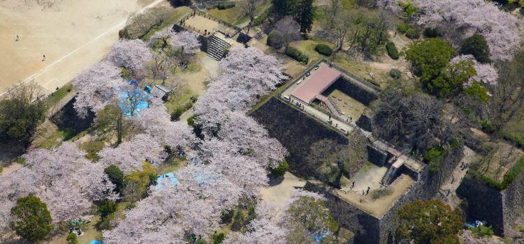 후쿠오카 성터1