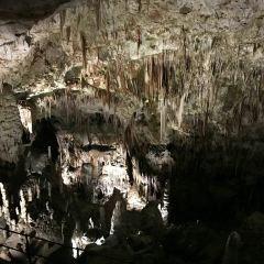 Postojnska Caves User Photo