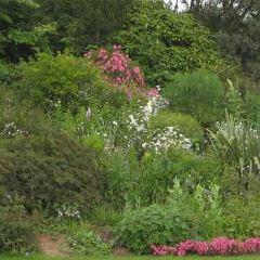 Geilston Garden User Photo
