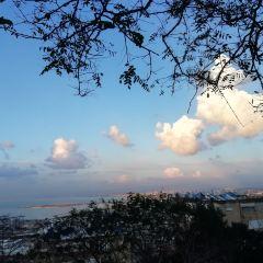 하이파 여행 사진