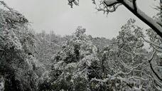 西山公园-萧山区-m33****5108