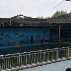 Dezhou Zoological and Botanical Garden User Photo