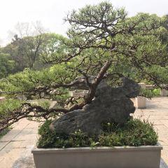 Wanjing Mountain Villa User Photo