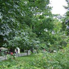 Planty Park User Photo