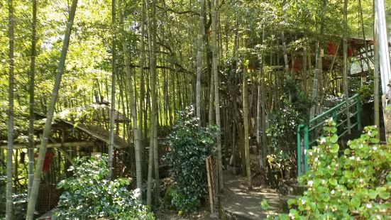 大本營竹筒飯
