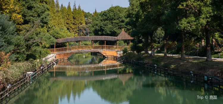 Shanghu Lake Scenic Area3