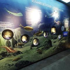 Naturhistorisk Museum User Photo