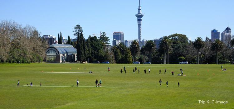 Auckland Domain2