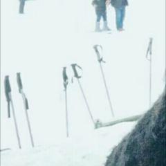 지난(제남) 진사만(금사만) 스키장 여행 사진