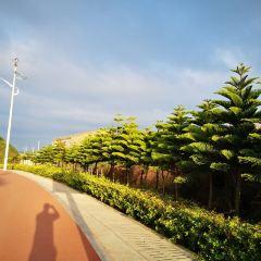 北港村用戶圖片