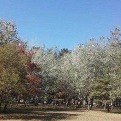 파세오 공원 여행 사진
