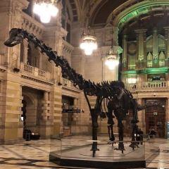 University of Michigan Museum of Natural History用戶圖片