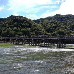 渡月橋用戶圖片