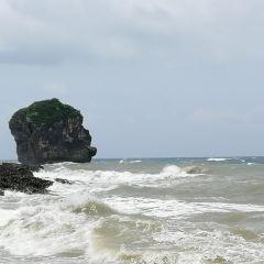 船帆石用戶圖片