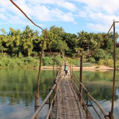 Bamboo Bridge User Photo