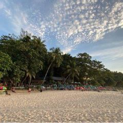 蘇林海灘用戶圖片