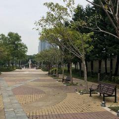 東涌用戶圖片