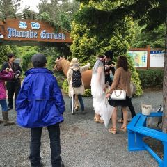 Manabe Garden User Photo