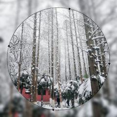 包公園用戶圖片