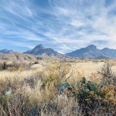 Big Bend National Park User Photo
