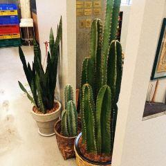 Erb Spa at Warehouse30 User Photo