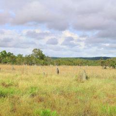 Charles Darwin National Park User Photo