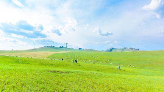 呼和諾爾草原旅遊區