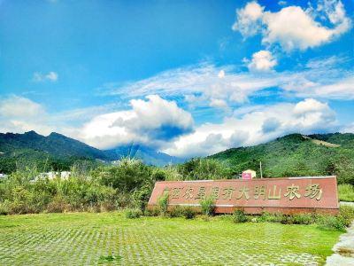 Guangxi Nongken Guoyou Daming Mountain Farm