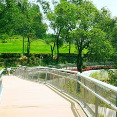 Xinghai Park (North Gate) User Photo