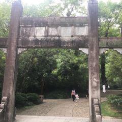 Wuyi Shan Fangsong Gu Street User Photo