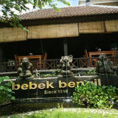 Bebek Bengil User Photo