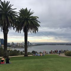 Kings Park User Photo