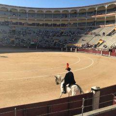 馬德里拉斯文塔斯鬥牛場用戶圖片