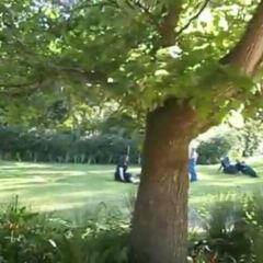 Arderne Gardens用戶圖片