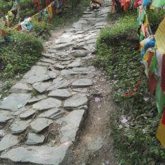 梵仙寺用戶圖片