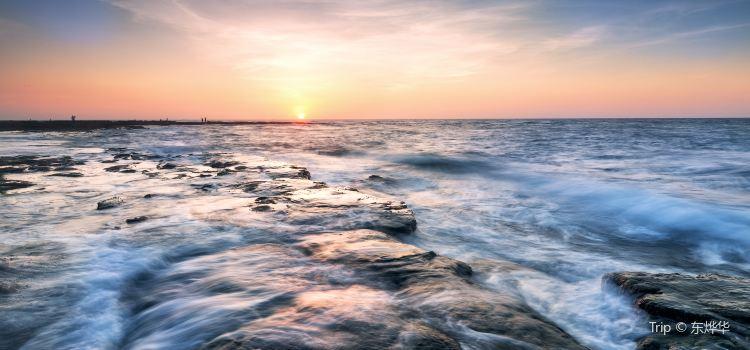 오채 해변3