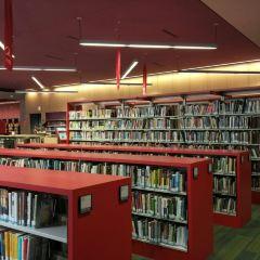 波士頓公共圖書館用戶圖片
