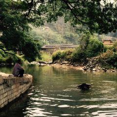 Gaozeng Dongzhai User Photo
