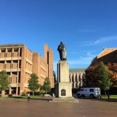 University of Washington User Photo