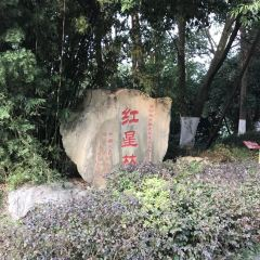 The Scenic Area of Deng Xiaoping's Former Residence User Photo
