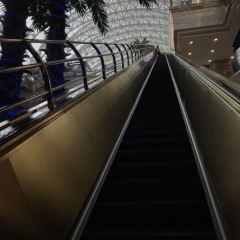 청두 신세계 뉴 월드 센터 여행 사진