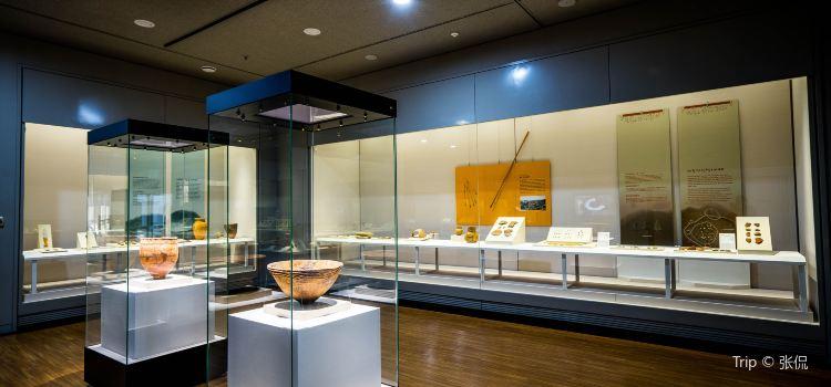 국립 제주 박물관2