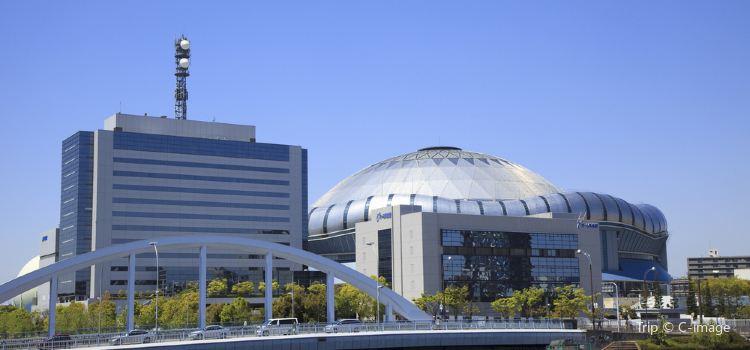 오사카 돔1