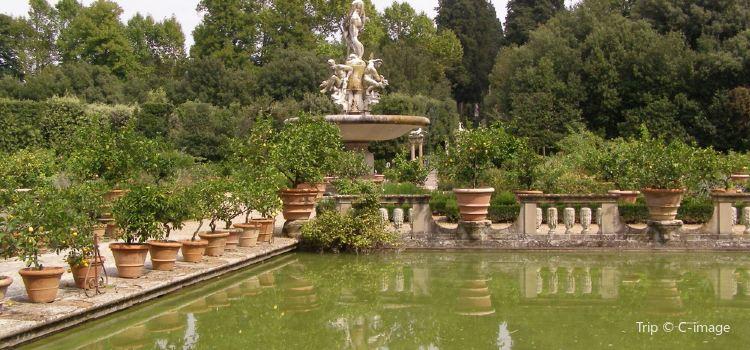 波波里花園2