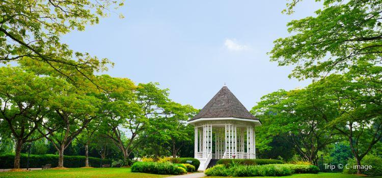 Botanical Garden (Botanischer Garten)1