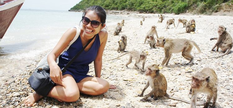 Monkey Beach3