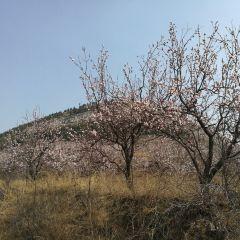 Taohuashan Park User Photo