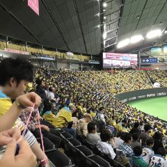 Sapporo Dome User Photo